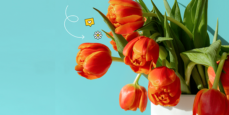 Rengarenk Çiçekler Bu Adreste